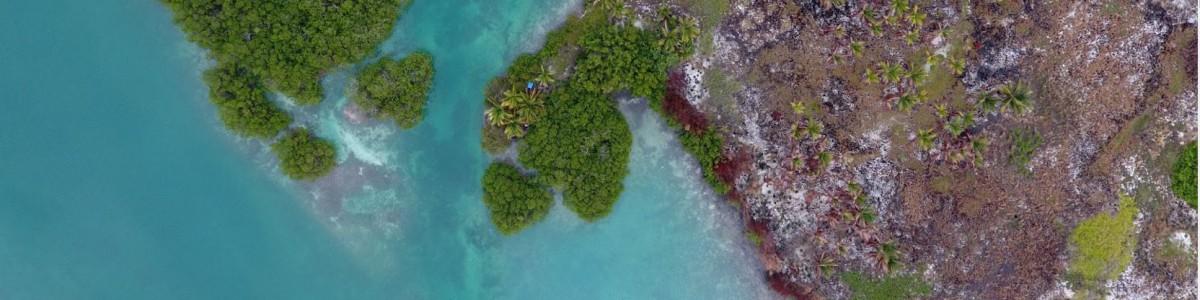 Drones In Belize